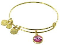 Alex and Ani Alex Ani October Rose Tourmaline Birthstone Expandable Bracelet Shiny Gold