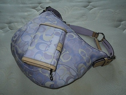 Coach Dooney Bourke Gucci Chanel Louis Vuitton Rare Tote in Purple