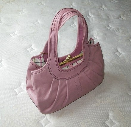 Coach Louis Vuitton Dooney Bourke Gucci Chanel Rare Satchel in Pink