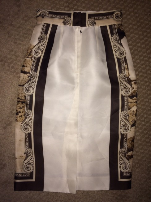 Dolce&Gabbana D&g Dolce & Gabbana New Skirt Brown/ Tan/ Off White