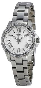 Fossil Fossil Cecile Stainless Steel Ladies Watch Am4576