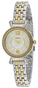 Fossil Fossil Es3895 Womens Watch Silver -