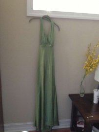 David's Bridal Green Do894 Dress