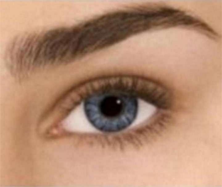 freshlook colorblends non prescription colored contact