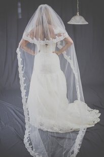 Soft Veil With Lace, Lace All Around, High Quality Veil