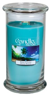 The Candle Factory The Candle Factory Large 15-ounce Jar Crackling Candle, Ocean Breeze