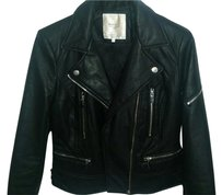 Zara Leather Trafaluc Motorcycle Jacket